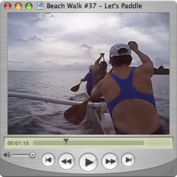 Watch Beach Walks with Rox Show #37