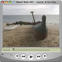 Click to Watch Beach Walks with Rox Show #65