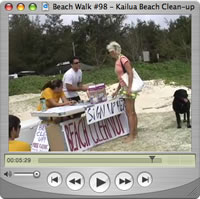 Watch Beach Walks with Rox #98