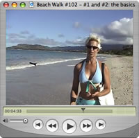Watch Beach Walks with Rox #102