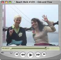 Watch Beach Walks with Rox #109