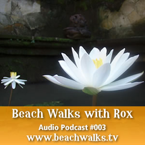 beachwalkaudio_003.jpg