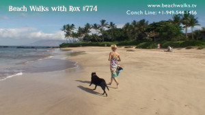 photo of Rox and Lexi on the beach Beach Walk 774 Releasing Resistance